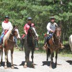 5 horse riders