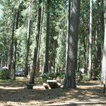 Dru Barner campground