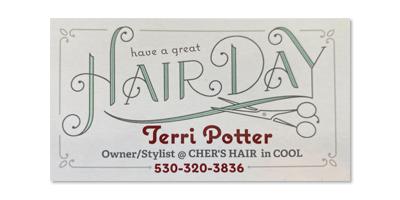 Terri Potter, Cher's Hair