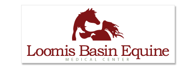 Loomis Basin Equine